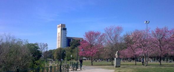 Spring in Rosario